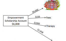 Example of fund allocation in an Empowerment Scholarship Account>