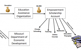 Empowerment Savings Account explanation>