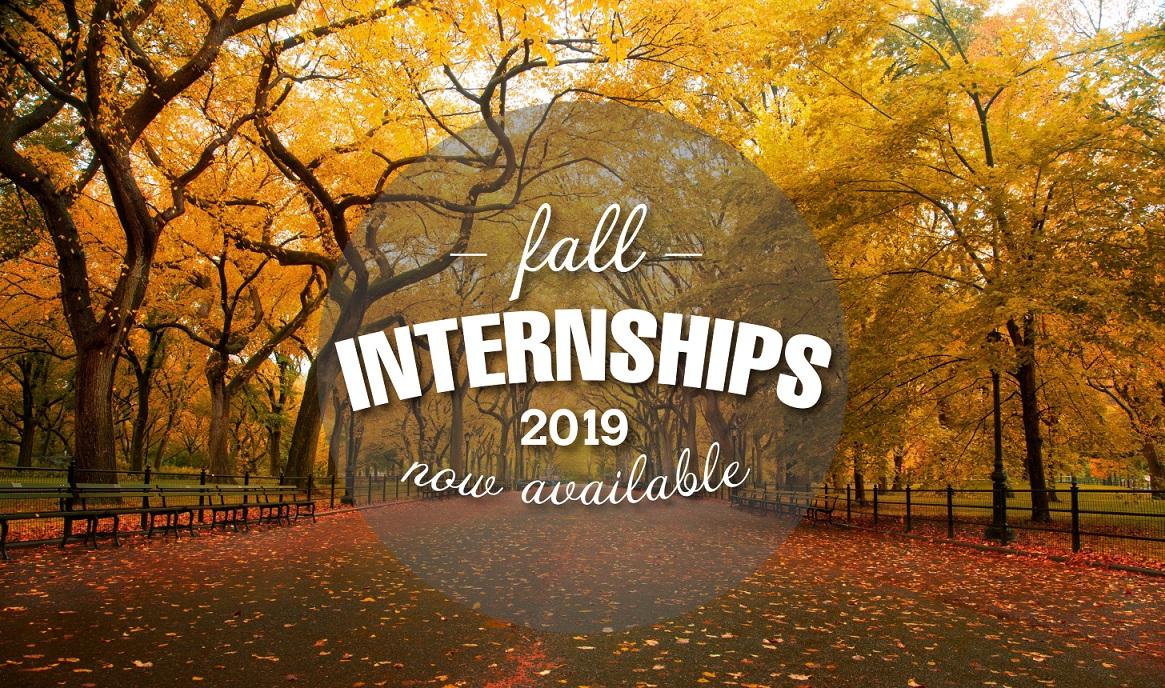 2019 Fall Internship banner