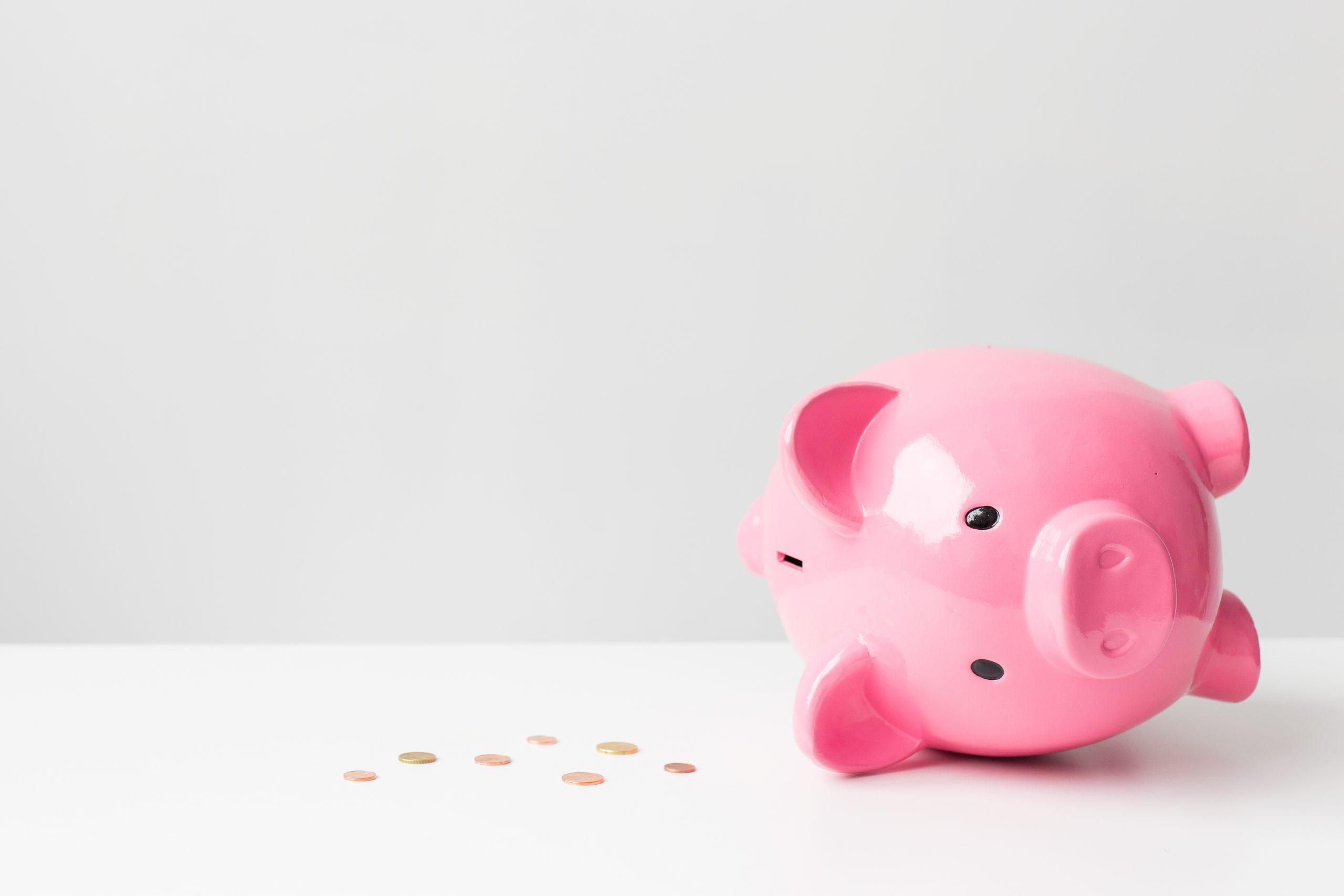 Empty piggy bank