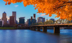 Post Multnomah County, Oregon Should've Called St. Louis Before Making This Mistake Thumbnail