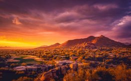 Arizona desert>