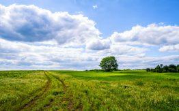 Rural Missouri scene>