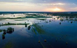 Floodplain>